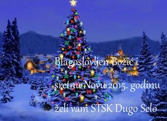 bozic2015